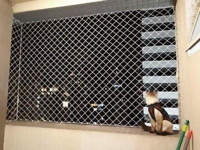 Tela de proteção para gatos em Campo Comprido