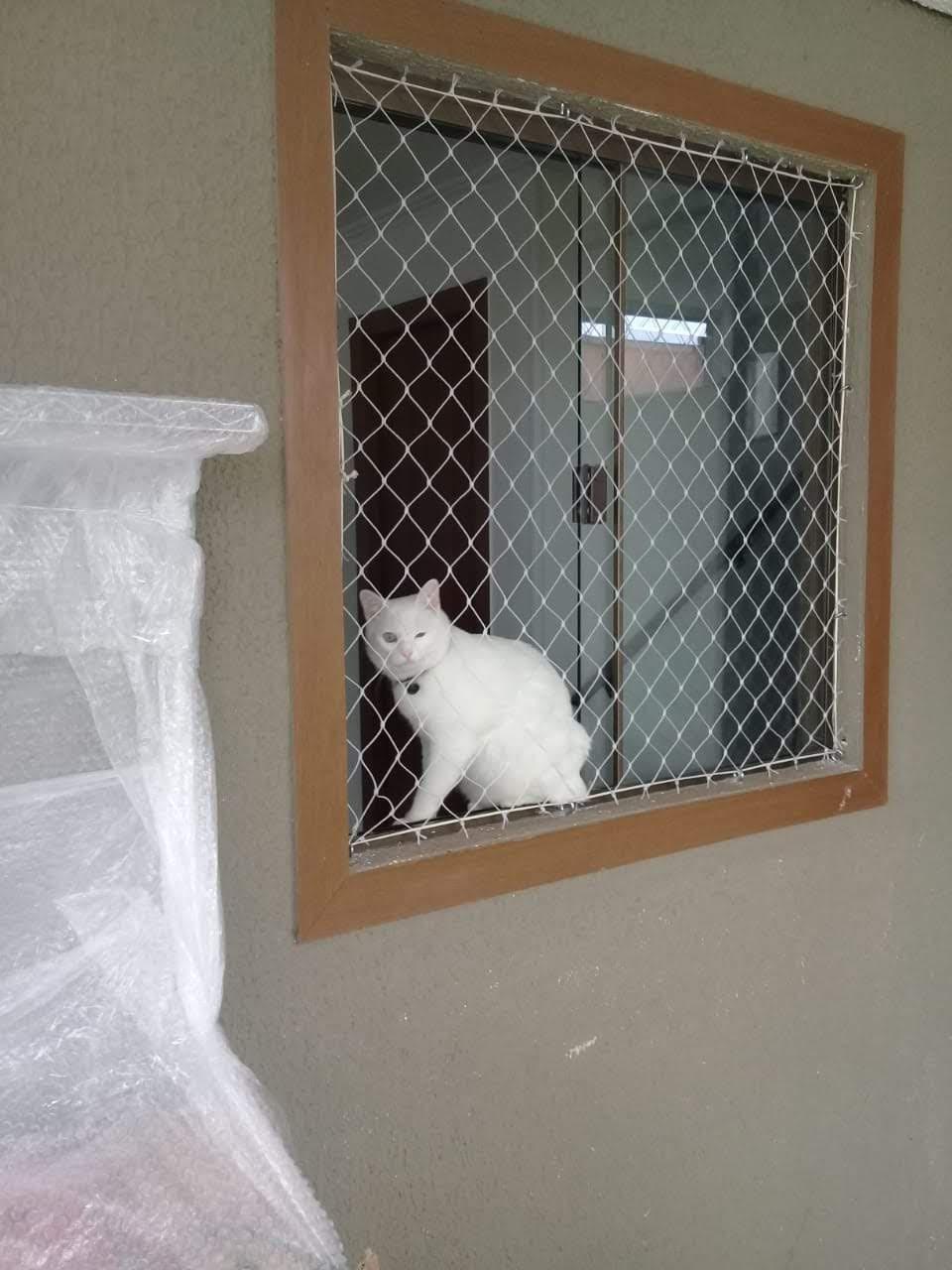 Redes de proteção para Gatos em Portão